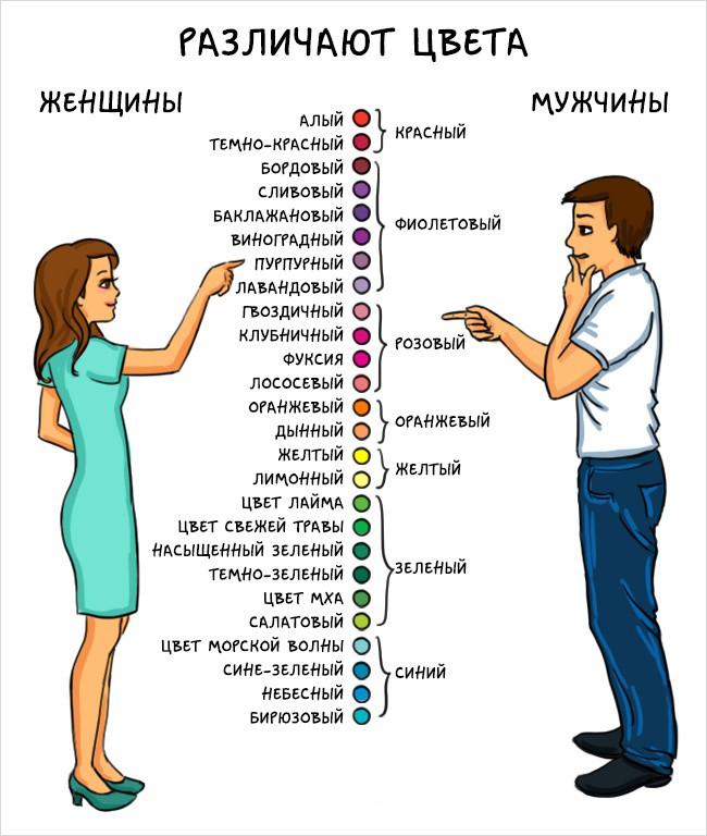 Как различают цвета мужчины и женщины